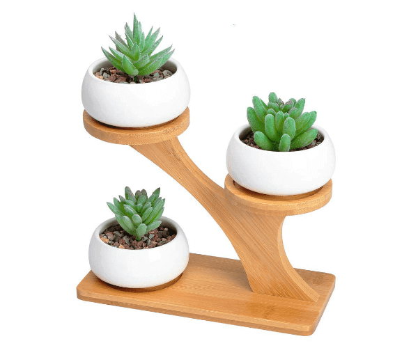 project-manager-gifts-plant-holder