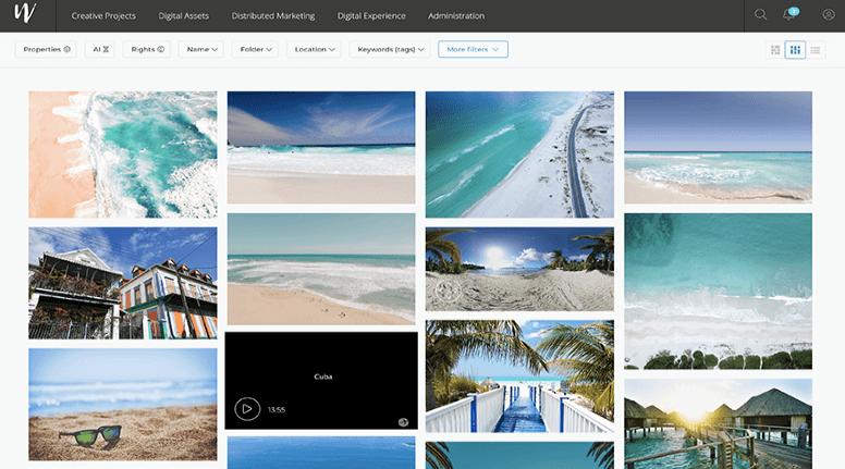 Wedia screenshot - Digital Asset Management Software