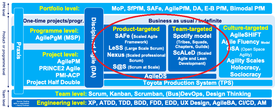 """a diagram of project methodologies for the portfolio level and project level. The method types """"product-targeted"""" and """"team-targeted"""" are circled in red"""