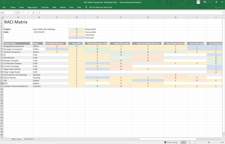 RACI Sample - Screenshot