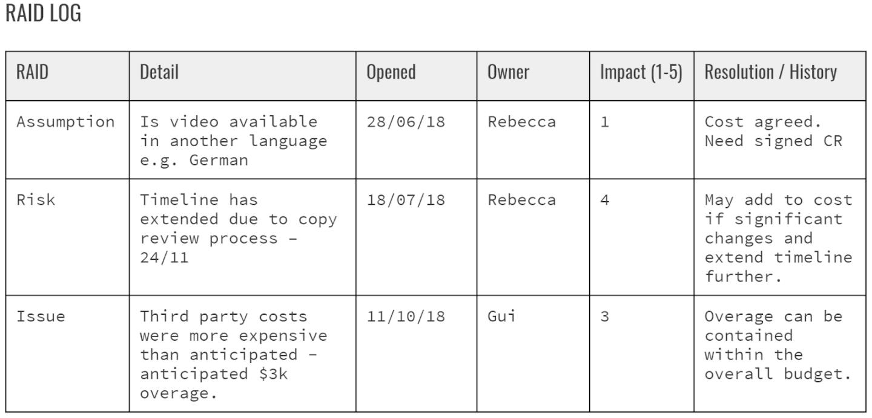 RAID log example screenshot