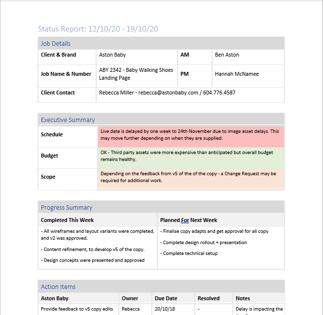Screenshot of Project Status Report
