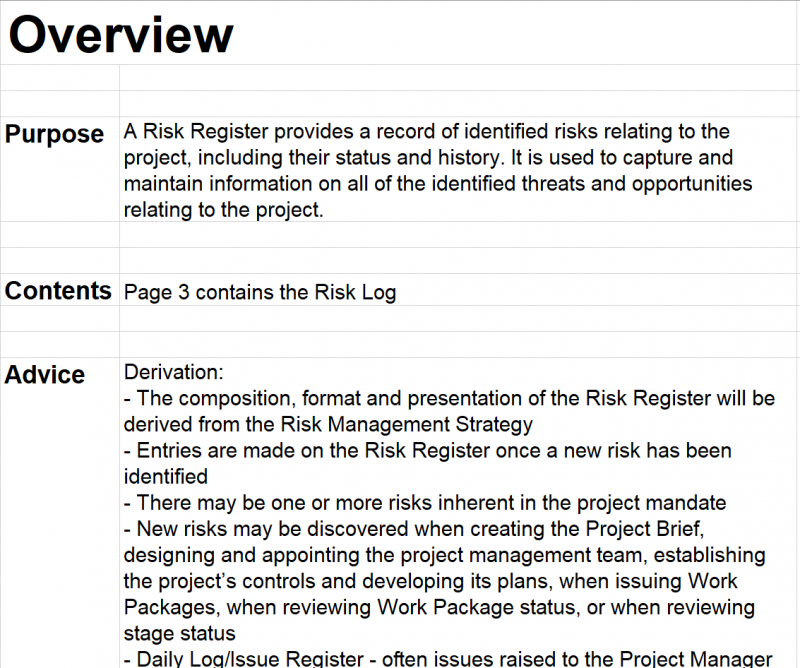 Example risk management plan overview